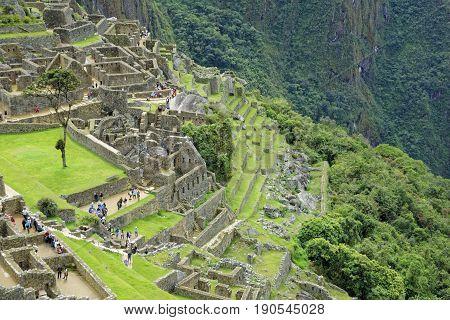 Trekking in one of the wonder of the world: Machu Picchu Cusco Peru
