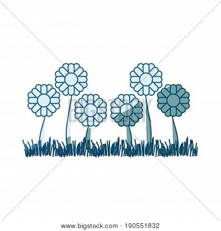 blue shading silhouette of sown of abstract sunflowers with thick contour vector illustration