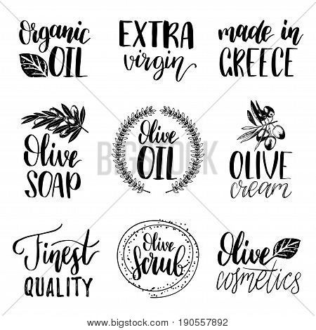 Vector hand lettering olive production logotypes or signs. Retro sketched extra virgin oil illustrations set for farm or cosmetics produce, packaging badges, tags, cafe, stores design etc.