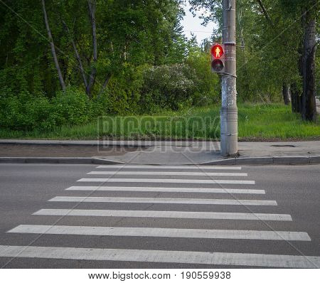 Pedestrian Crossing Zebra With Traffic Lights