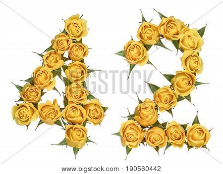 Arabic Numeral 42, Forty Two, From Yellow Flowers Of Rose, Isolated On White Background
