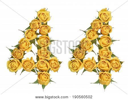 Arabic Numeral 44, Forty Four, From Yellow Flowers Of Rose, Isolated On White Background