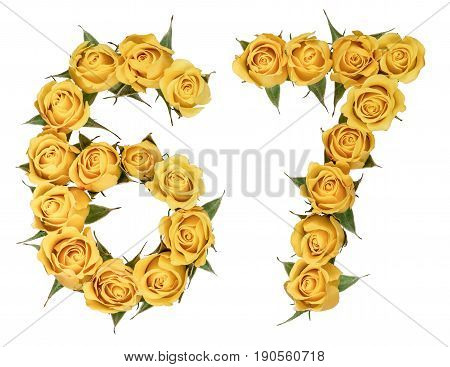 Arabic Numeral 67, Sixty Seven, From Yellow Flowers Of Rose, Isolated On White Background