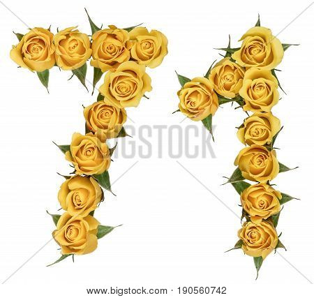 Arabic Numeral 71, Seventy One, From Yellow Flowers Of Rose, Isolated On White Background