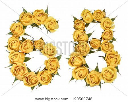 Arabic Numeral 68, Sixty Eight, From Yellow Flowers Of Rose, Isolated On White Background