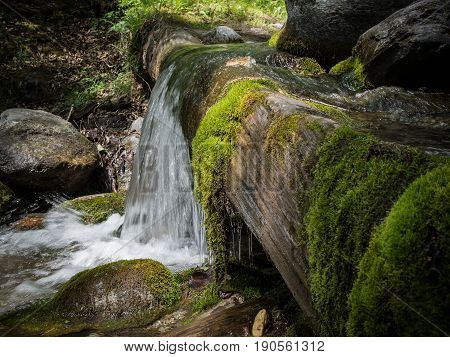 A small waterfall in a wild forest. A small water flow