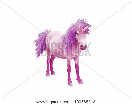Pink baby unicorn horse with violet mane and tail isolated on white