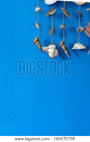 A wind chime with shells on a blue background on a stick