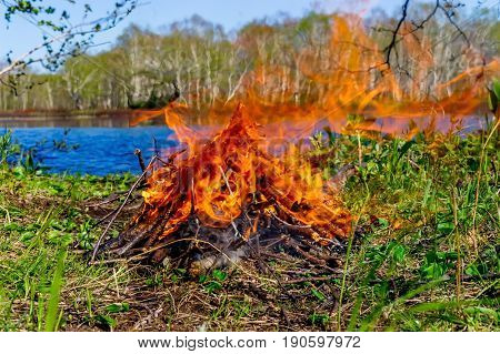 Small bonfire flames close up with lake on background
