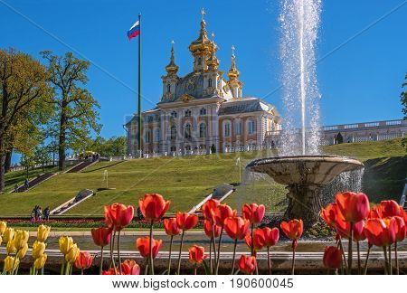 Petergof, Russia - June 5, 2017: The building of the church building. Flowers are in the foreground. In the back there is a church, a flagstaff and a fountain. Peterhof is called the capital of fountains.