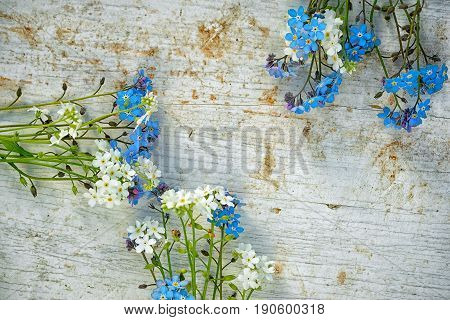 Three Bunches Of White And Light Blue Forget Me Not Flowers On As A Frame On An Old Wooden Painted T
