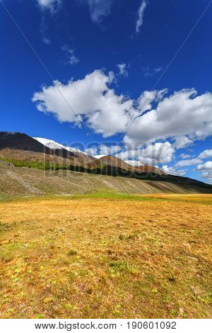Mountain Altai Russia. Green mountains and yellow meadow. The mountainous landscape. Mountain peaks in the clouds.