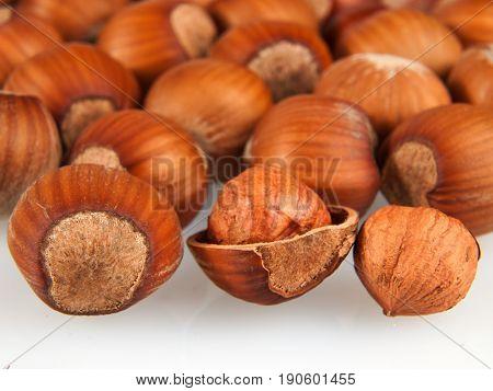Heap of ripe hazelnuts nuts close up