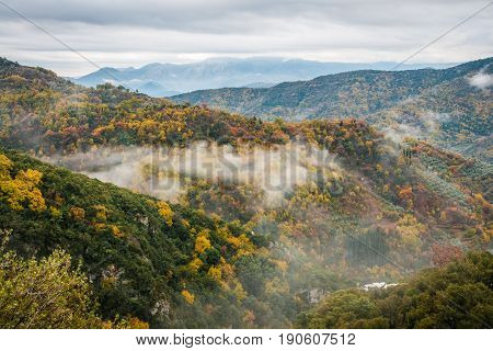 Autumn Foggy Landscape In Gorge Of Louise On Peloponnese, Greece