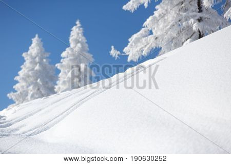Winter landscape with snow covered trees. Austrian alps