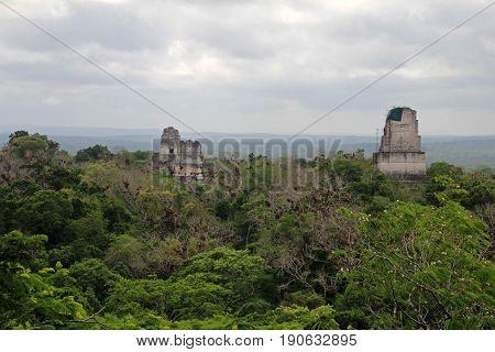 The mayan ruins Tikal Guatemala, Central America