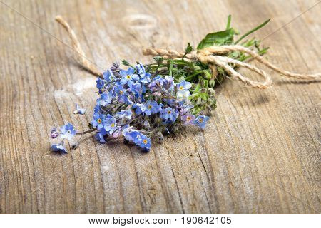 Forget me nots flowers with ribbon on a dark wooden background copy space