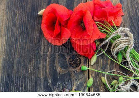 Blossoming wild poppies on the dark wooden background. Wallpaper screensaver background. Spring flowers.