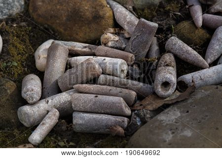 Belemnites on the nature background. The fucking finger