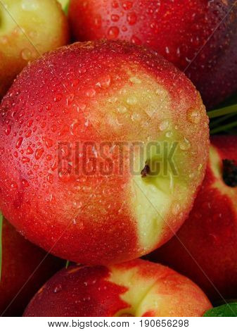 Close-up of a ripe juicy nectarine with water drops
