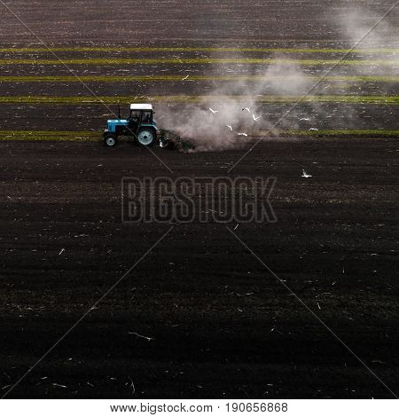The blue tractor plows the field against the backdrop of the black earth, and behind it birds fly and collect food. Aeril view. Agricultural machinery works in the field of spring planting. Plowing from above.