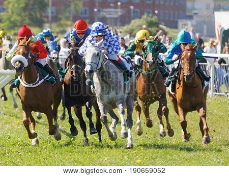 STOCKHOLM SWEDEN - JUNE 06 2017: Jockeys on gallop arabian race horses storming ahead at Nationaldags Galoppen at Gardet. June 6 2017 in Stockholm Sweden