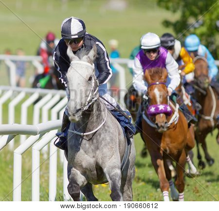 STOCKHOLM SWEDEN - JUNE 06 2017: Closeup of coloful jockeys on gallop arabian race horses storming ahead in a curve at Nationaldags Galoppen at Gardet. June 6 2017 in Stockholm Sweden