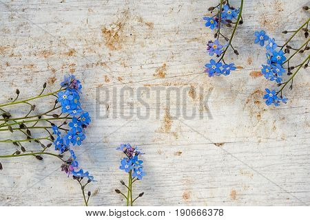 Frame Of Forget Me Not Flowers On A Wooden Background With Copy Space For Your Text