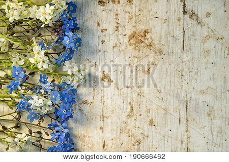 Frame From A Row Of Blue And White Forget Me Not Flowers At The Wooden Shabby Background With Copy S