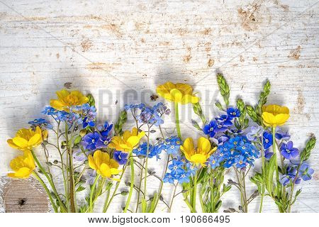 Buttercup And Forget Me Not Wild Flowers In A Row As A Frame At The Long Side Of The Shabby Painted