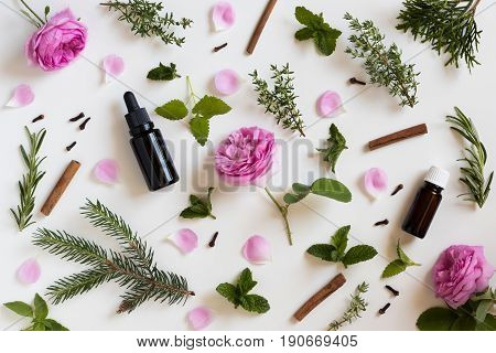 Selection Of Essential Oils And Herbs On A White Background