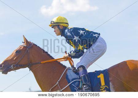 STOCKHOLM SWEDEN - JUNE 06 2017: Closeup of female jockey riding a brown gallop arabian race horse at Nationaldags Galoppen at Gardet. June 6 2017 in Stockholm Sweden