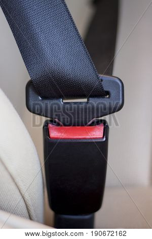 Close-up view of fastened seatbelts inside a car.