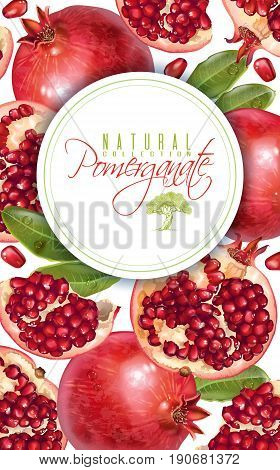 Vector vertical banner with pomegranate fruits on white background. Design for cosmetics, spa, pomegranate juice, health care products, perfume. Can be used as vegetarian menu or summer background