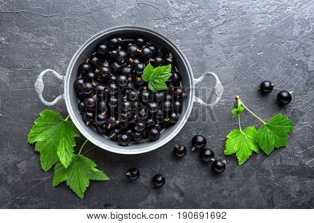 Blackcurrant berries with leaves, black currant, black currant closeup