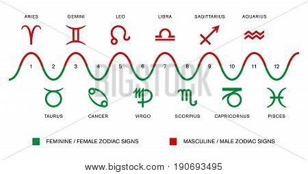 The polarity of the zodiac signs. Masculine / male and feminine / female zodiac signs in astrology. Red and green symbols with Latin astrological sign names. Illustration on white background. Vector.