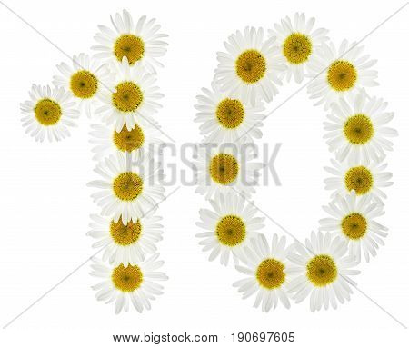 Arabic Numeral 10, Ten, From White Flowers Of Chamomile, Isolated On White Background