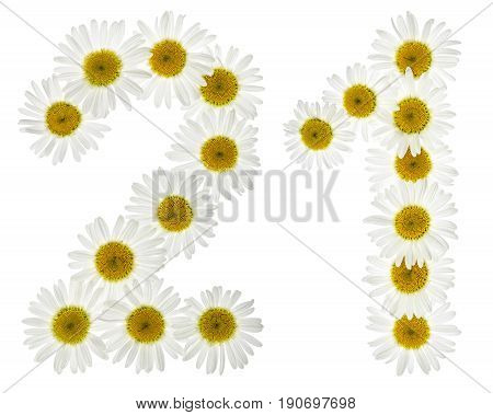 Arabic Numeral 21, Twenty One, From White Flowers Of Chamomile, Isolated On White Background
