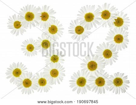 Arabic Numeral 32, Thirty Two, From White Flowers Of Chamomile, Isolated On White Background