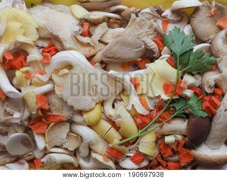 Champignon Mushroom Food
