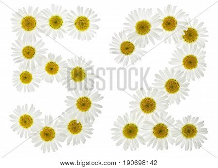 Arabic Numeral 52, Fifty Two, From White Flowers Of Chamomile, Isolated On White Background