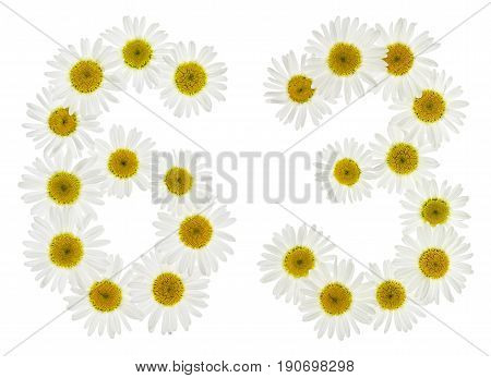Arabic Numeral 63, Sixty Three, From White Flowers Of Chamomile, Isolated On White Background