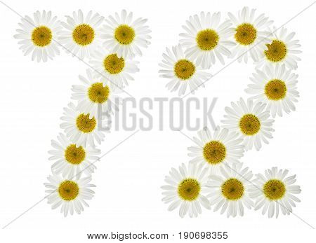 Arabic Numeral 72, Seventy Two, From White Flowers Of Chamomile, Isolated On White Background