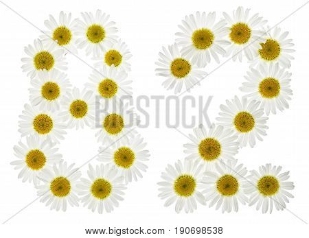 Arabic Numeral 82, Eighty Two, From White Flowers Of Chamomile, Isolated On White Background