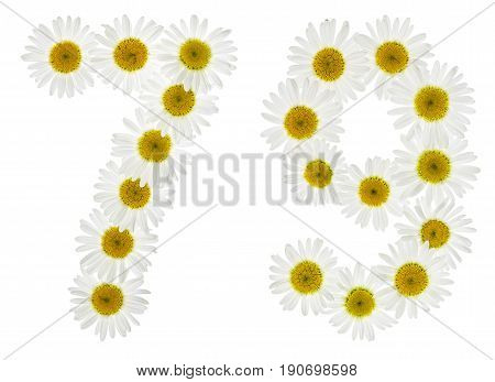 Arabic Numeral 79, Seventy Nine, From White Flowers Of Chamomile, Isolated On White Background