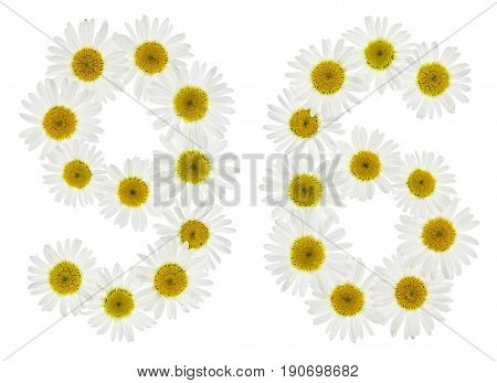 Arabic Numeral 96, Ninety Six, From White Flowers Of Chamomile, Isolated On White Background
