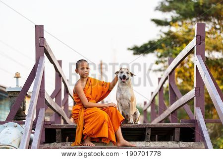 Young novices monk and dog on wooden bridge