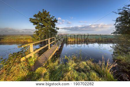 Footbridge Crossing Over River