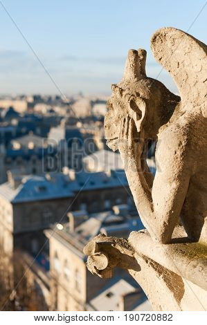 Gargoyle Watching The Roof Of Paris - Vertical