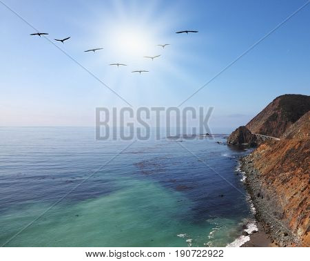 Triangular flock of gray pelicans over the rocky shores of the Pacific Ocean